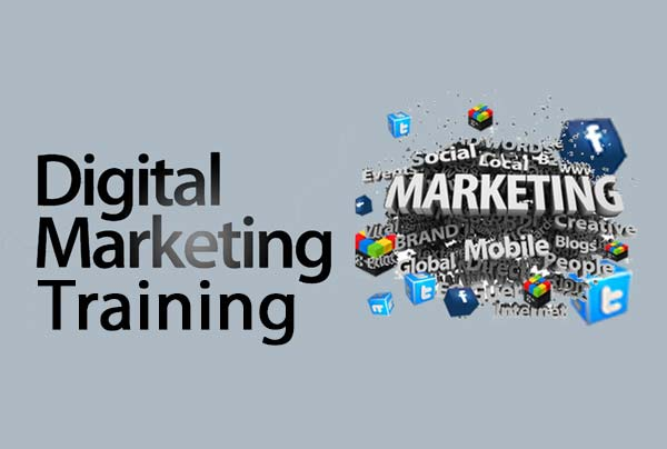 Digital Marketing Training in Ambala